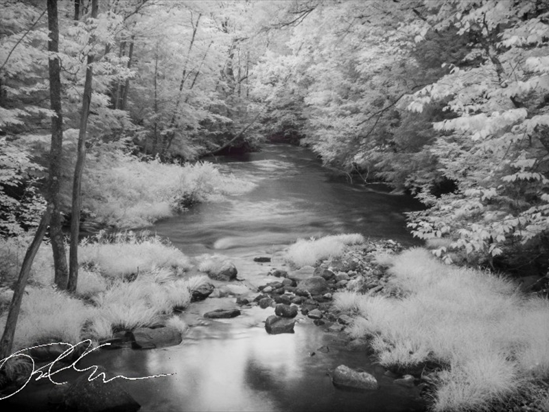 IR_MG_0940wm